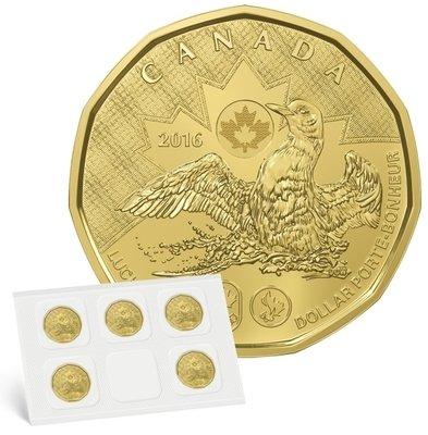 Канада. Елизавета II. 2016. 1 доллар. Набор из 5 монет. Везучий Селезень. Олимпиада в Рио. Ni-Cu. KM#. UNC