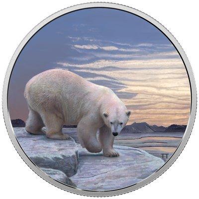 Канада. Елизавета II. 2018. 30 долларов. Серия: Арктические животные и северное сияние. Белый Медведь. 0.9999 Серебро 2.018 Oz., ASW., 62.69 g., PROOF / Colored