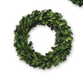 Mini Large Boxwood Wreath 718540491485