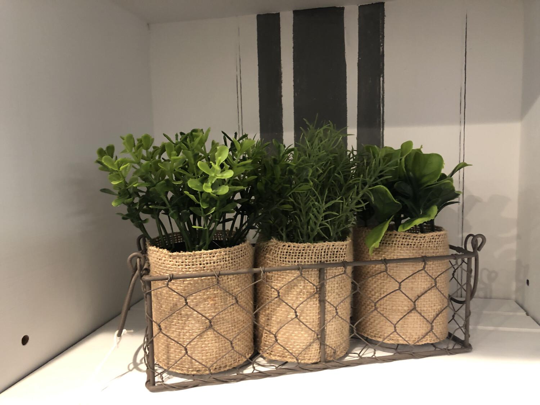 Set Of 3 Mini Plants Burlap W/wire Holder