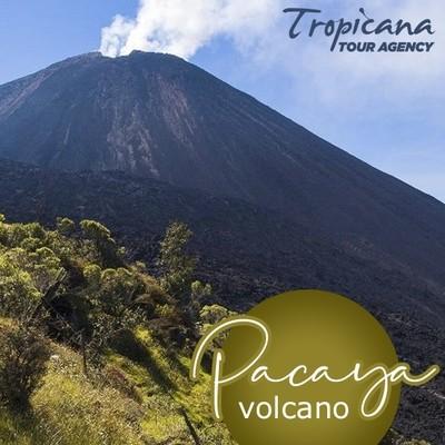 PACAYA Volcano Tour