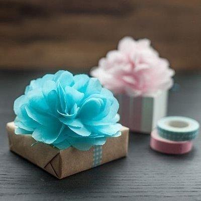 Tissue Poms Poms 4