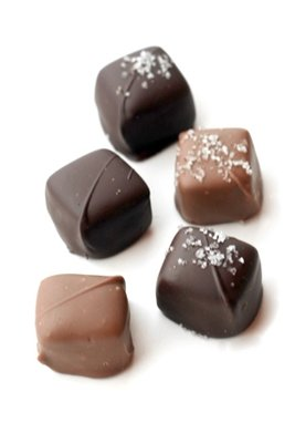 48 Piece Chocolate Covered Sea Salt Caramels