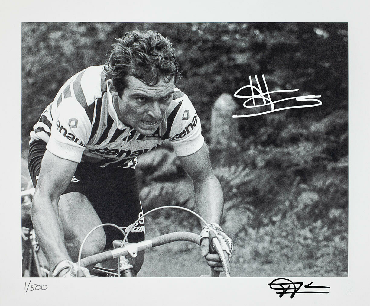 Bernard Hinault Attacking