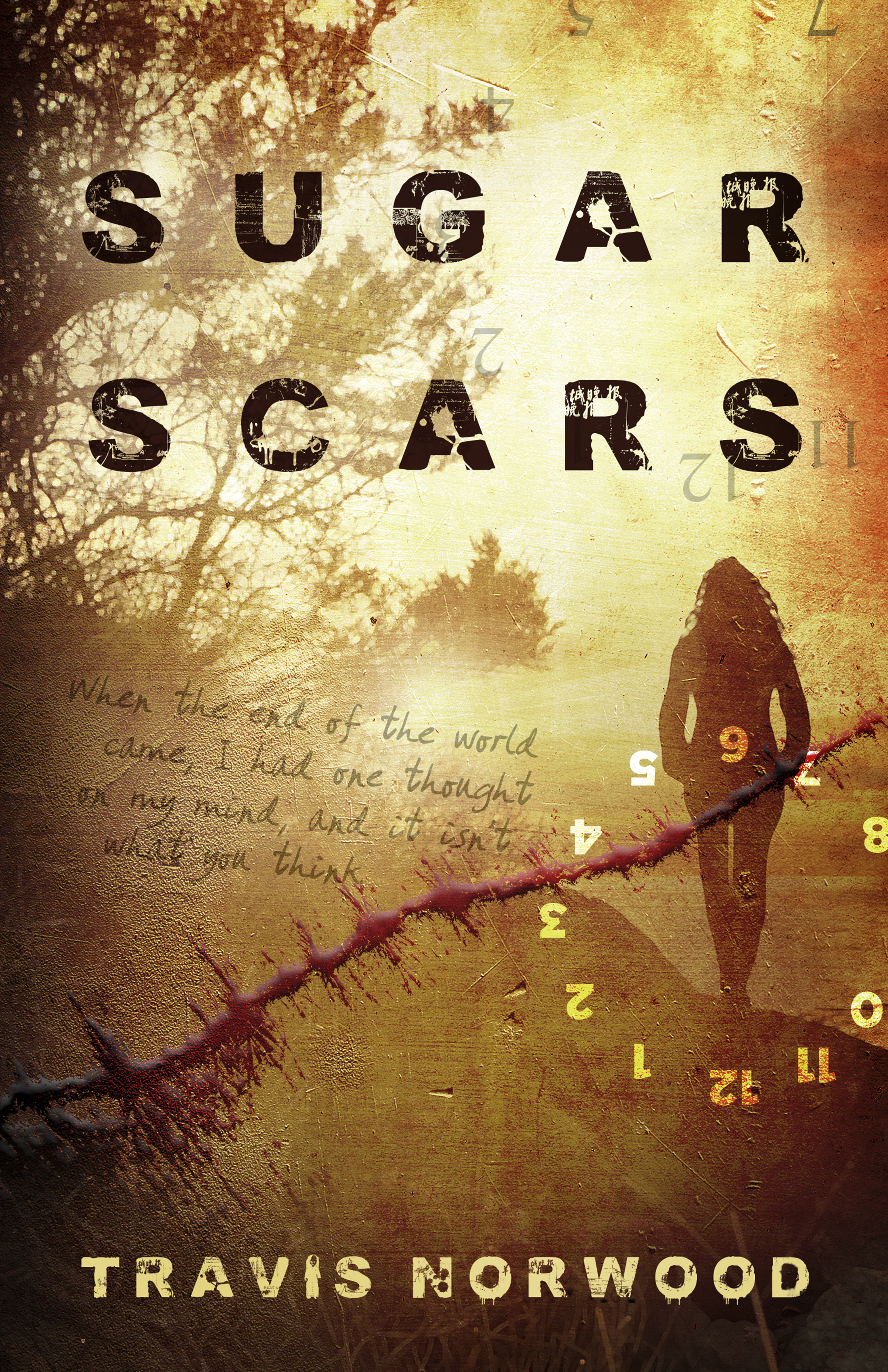 Sugar Scars 00118