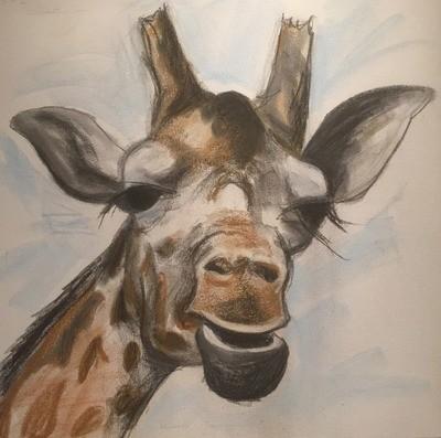 Giraffe - A4 Pastel Sketch on Canvas
