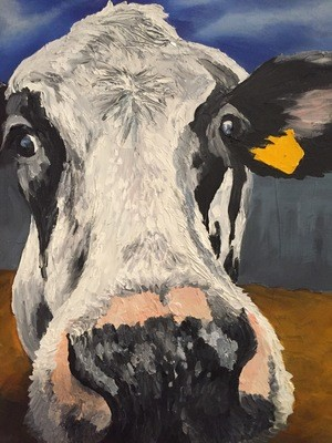 Close Up Cow (A3)