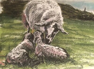 Mother Cleaning New Borns - A4 Pastel Sketch