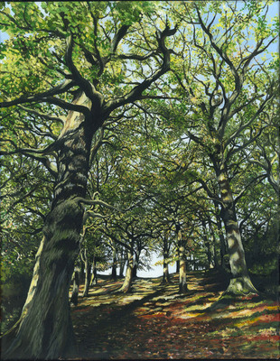 Jolly Woods (A3)