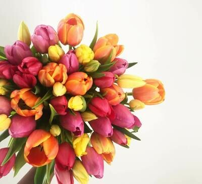 Bouquet 50 Tulipanes