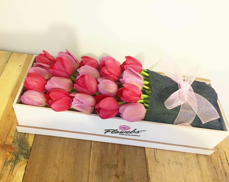 Caja de Tulipanes