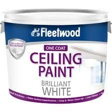Fleetwood Ceiling Paint Matt Brilliant White Paint