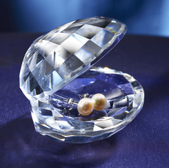 Gifts - Earrings - Oyster with Pearls