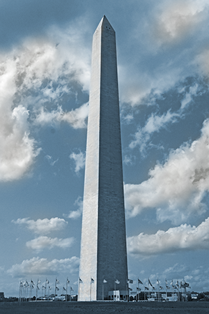 Washington's Brilliance by Luke Wilbur