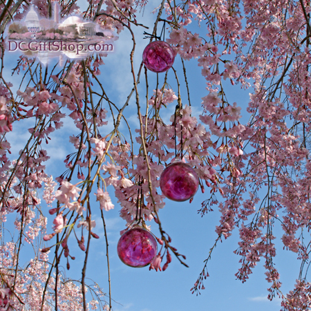 Ornaments - Glass - Cherry Blossom Glass Balls (Set of 3)