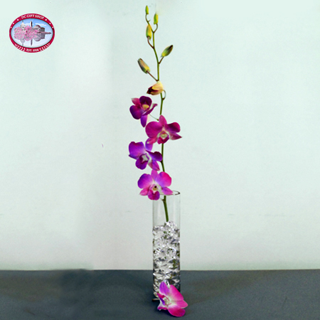 Gifts - Mother's Day - Single Purple Orchid with Vase