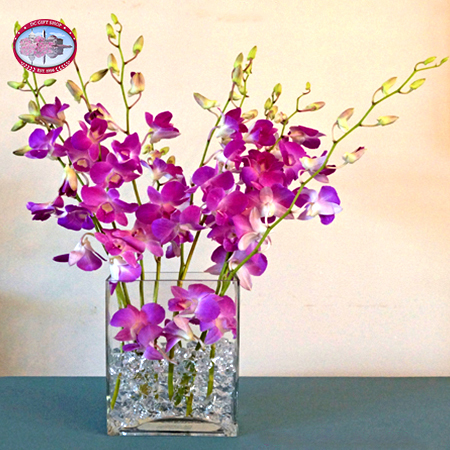 Gifts - Mother's Day - Purple Orchid Arrangement