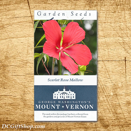 Scarlet Rose Mallow Heirloom Seeds - 3 pack
