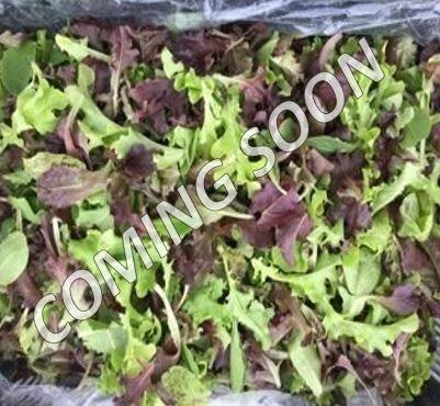 Italian Salad Mix