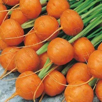 Thumbelina Carrots - 24 ct - $24