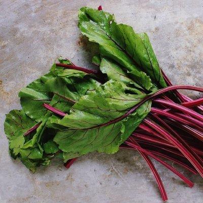Beet Greens - 4lbs - $12