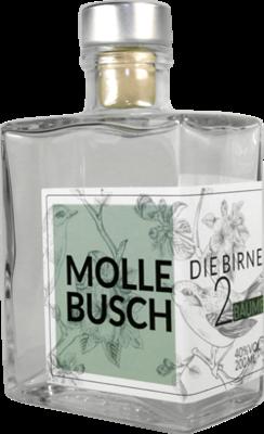 Mollebusch (Arno Issing)