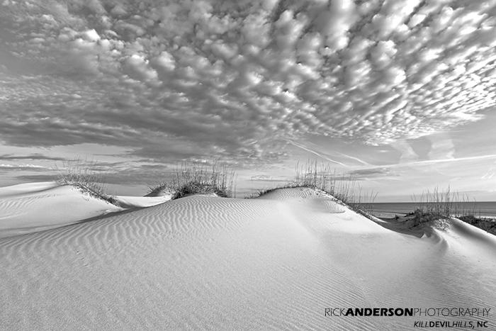 Untouched Dune - Carova, NC