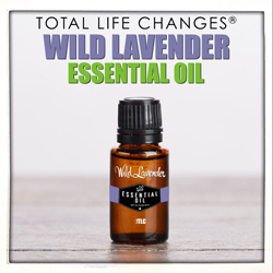 Wild Lavender Essential Oil