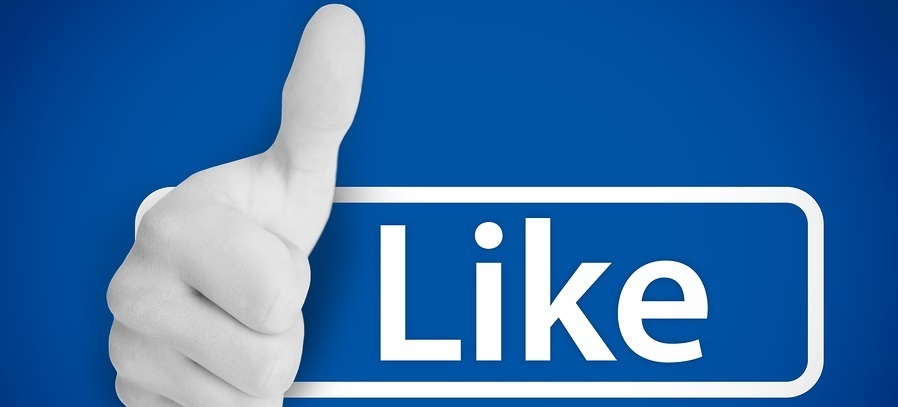 1,000 Facebook Fan Page Likes FB1000FPL