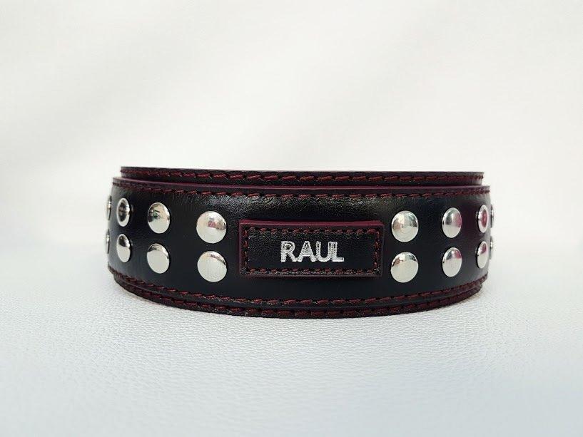 Mod. Raul