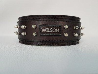 Mod. Wilson