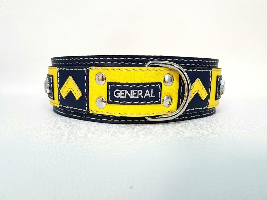 Mod. General