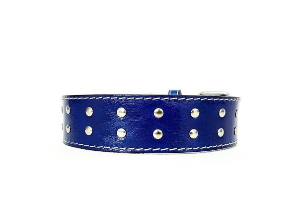Blu royal (4cm/ 1,57 inches)