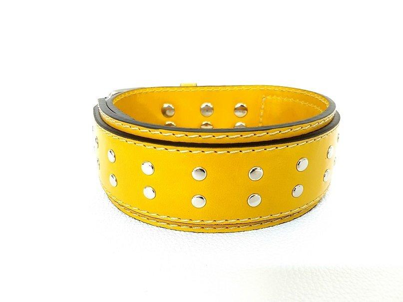 Senape / Mustard-coloured (5 cm / 1,97 inches)