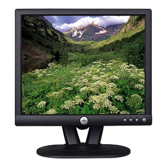 Dell E173FPF 17 Monitor (VGA)