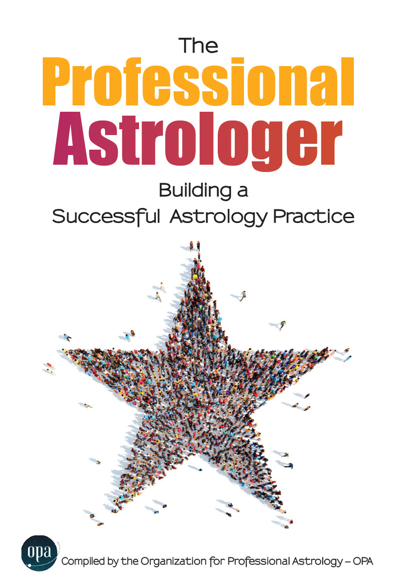 The Professional Astrologer: Building a Successful Astrology Practise