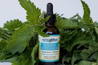 Nettle Blend Tincture (1 oz, 2 oz, & 8 oz)