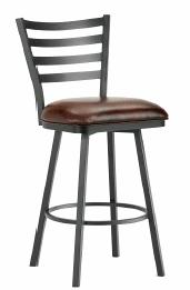 Tioga Bar Stool in Black 5403130