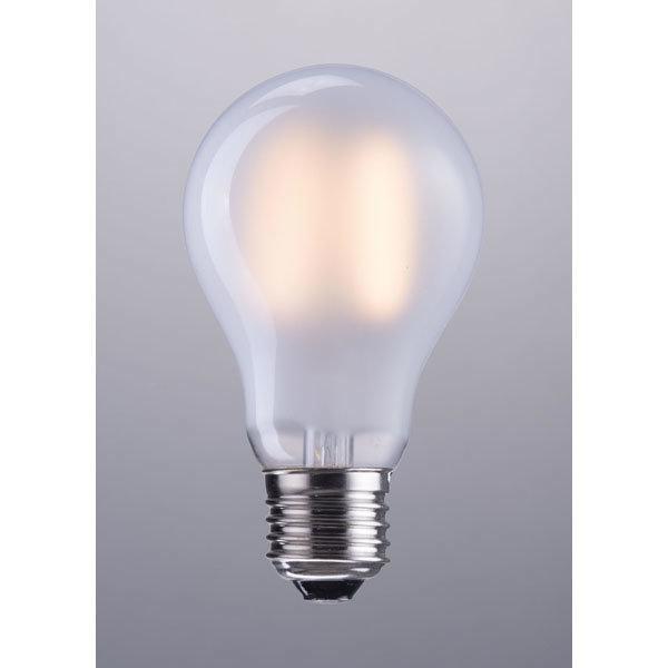 P50026 A19 LED Bulb P50026