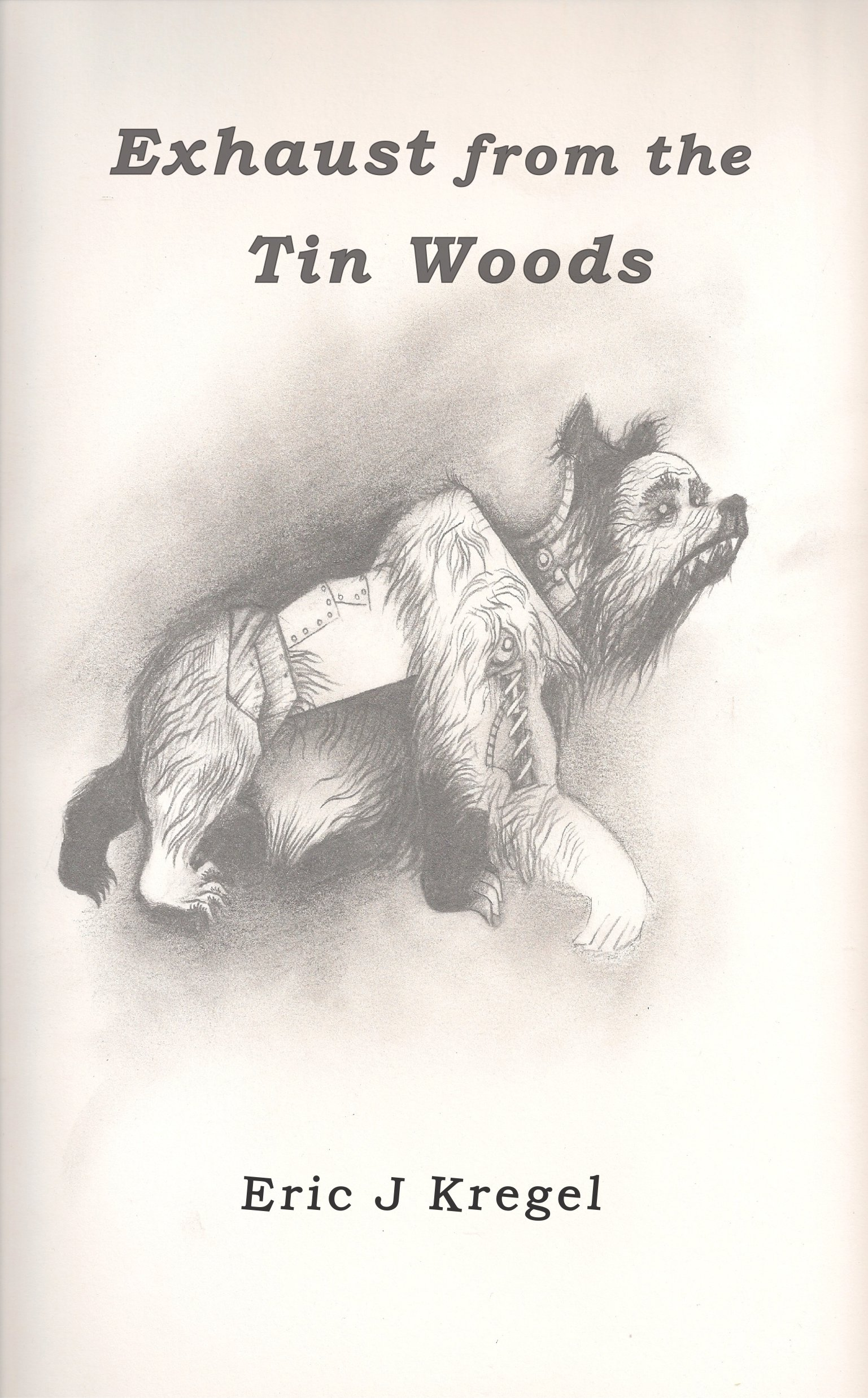 Exhaust from the Tin Woods: 2nd Edition ebook EJK18DE001