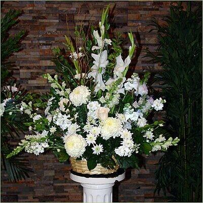 Gladiolus and Pom Pom Display
