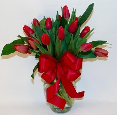 Tulip Craze
