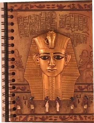 King Tut Journal, $329