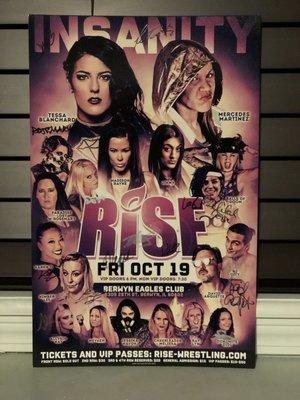 RISE 10 - INSANITY V1 Signed Poster