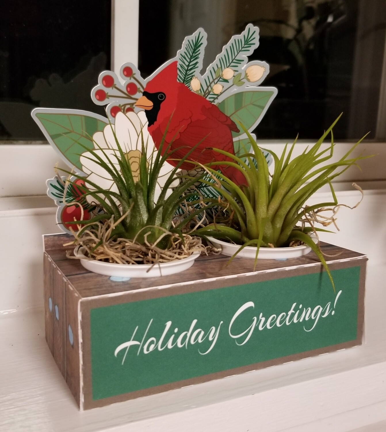 Cardinal K-Cup Gift Box (plant not included)