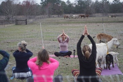 Be Life Farm Goat Yoga Day Retreat