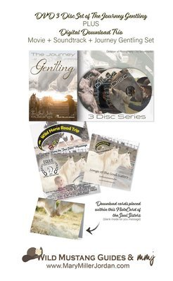 The ULTIMATE SOUL SISTERS GIFT SET! --> DVD of Gentling Set + Digital Download + Digital Download of MOVIE + Digital Download of SOUNDTRACK + Soul Sister Note Card