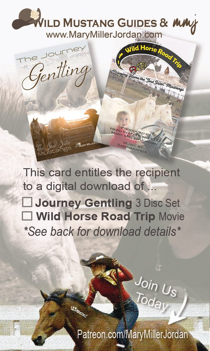 Download Card of Wild Horse Road Trip Movie!
