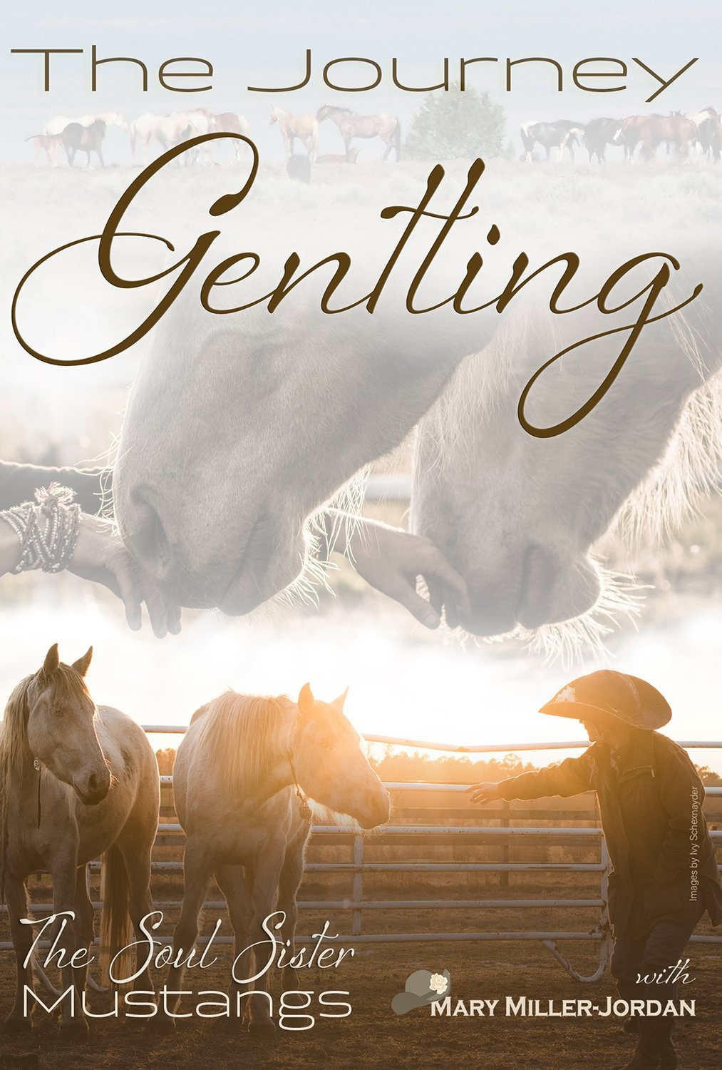Digital Download of The Journey Gentling the Soul Sisters