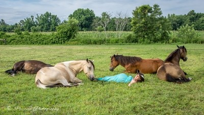 Mustang Meditation at Be Life Farm (July 7th)